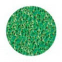 4 g, Neon Green